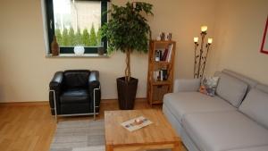 Wohnung II Wohnzimmer (3)